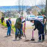 Каждый житель Узденщины может принять участие в весенней посадке деревьев