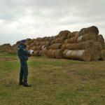 МЧС провело мониторинги мест хранения грубых кормов