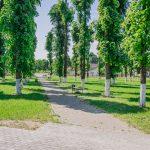 Парк — место для отдыха? Разбираемся почему один парк в райцентре отличается от другого