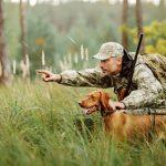 С 1 октября открывается охота на лося, кабана, косулю, оленя благородного, оленя пятнистого, лань и муфлона.