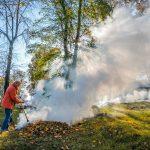 Борьба за листву Стоит ли убирать опавший «разноцветный урожай»?
